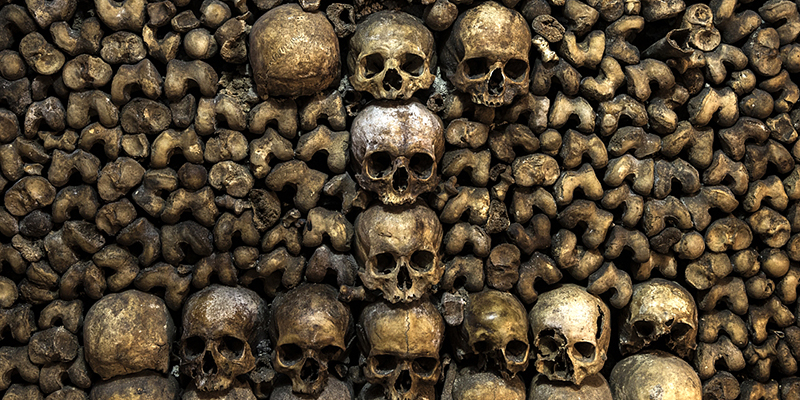 Visit the Catacombs of Paris
