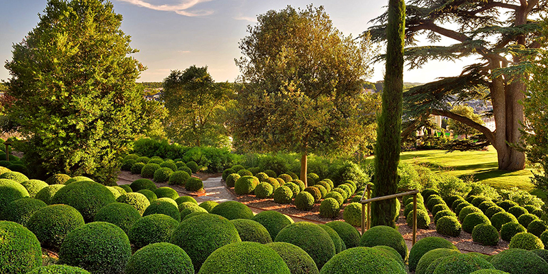 Terraced gardens of Chateau d'Amboise
