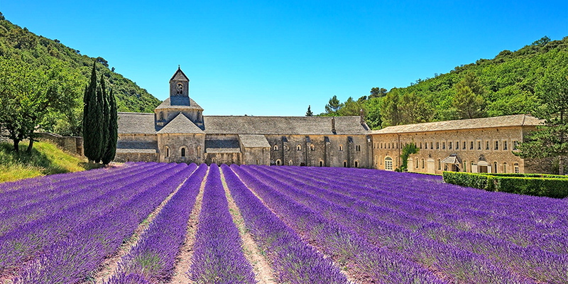 Soak up the stunning variety of landscapes, fields of lavender, ancient olive groves or cliff top roads.